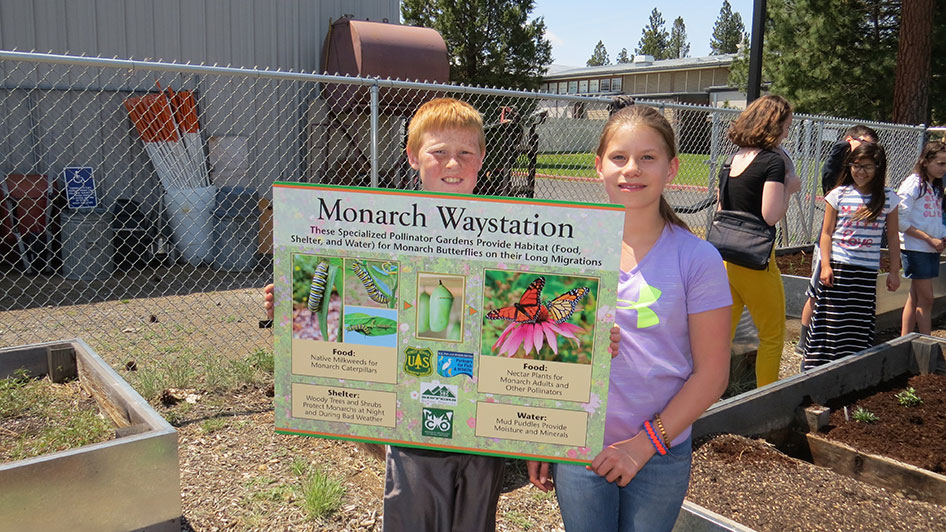 2016-05-27-monarch-waystation-01